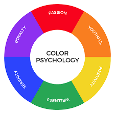 how to choose the right color palette for your business creative