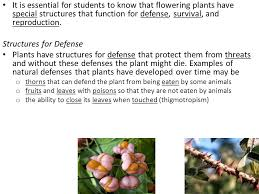 defense survival and reproduction in flowering plants ppt