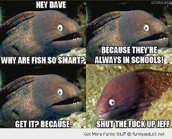 Funny Fish Memes - fish meme my day