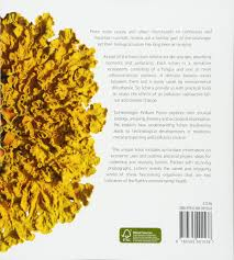 lichens life amazon co uk william purvis 9780565091538 books