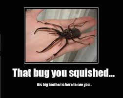 Mosquito Memes - animal memes that bug you squished funny memes