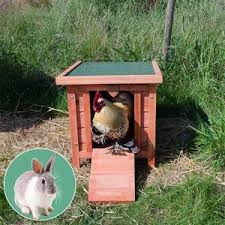 Ferret Hutches And Runs Mountain Raised Easy Access Ferret Hutch And Run Buy Animal