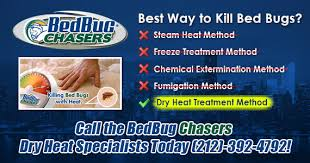 Medicine For Bed Bugs Want To Get Rid Of Bed Bugs Brooklyn Queens Ny In Just One Day