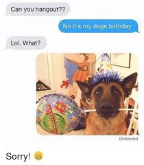 Birthday Dog Meme - can you hangout no it s my dogs birthday lol what delivered