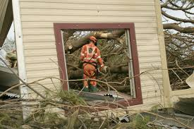 Double Pane Window Replacement Cost Hurricane Resistant Windows Cost And Advantages