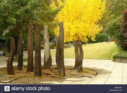 Botanical Gardens In Birmingham Al Birmingham Al Alabama Birmingham Botanical Gardens Autumn