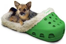 pizza dog bed 11 insane dog beds you never knew existed rover com