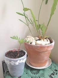 terracotta pots painting terracotta pots friendly nettle