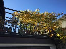 Wirtschaftsschule Bad Aibling 4 Zimmer Wohnungen Zu Vermieten Landkreis Rosenheim Mapio Net