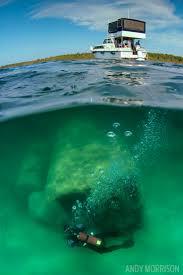 Michigan snorkeling images 759 best free diving scuba diving images scuba jpg
