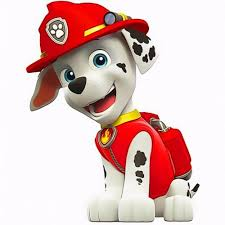 paw patrol images marshall photomania hd wallpaper