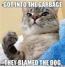 Meme Kitty - kitty success by healyman5000 meme center