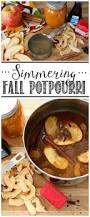 best 25 fall potpourri ideas on pinterest diy fall scents house