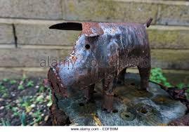 garden ornament pig stock photos garden ornament pig stock