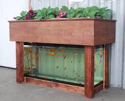 aquaponics work