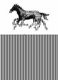 imagenes magicas en movimiento pdf webquest plenilunio animation