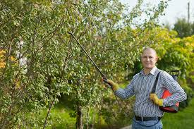 usu extension launches e learning pesticide applicator course