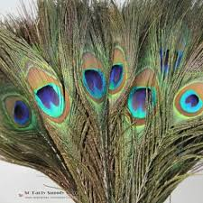 natural peacock feathers promotion shop for promotional natural