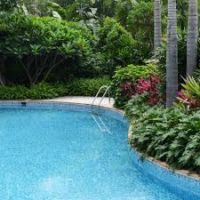 Best Backyards Best Pool Landscaping On A Pictures With Wonderful Backyard