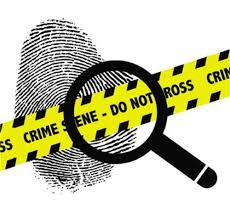forensic worksheets the best and most comprehensive worksheets
