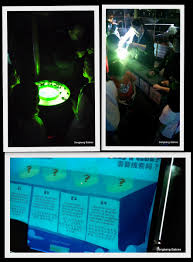 aquarium halloween halloween sea aquarium archives sengkang babies