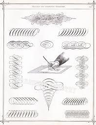 128 best ornamental calligraphy penmanship flourish images on
