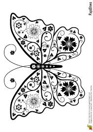 32 best dessin insectes papillons images on pinterest drawings