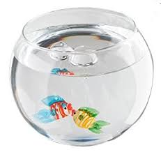 floating sea world glass fish bowl with glass fish