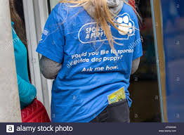 Blind Charity Sponsor A Puppy Guide Dogs For The Blind Charity Muggers Operating