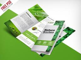 brochure 3 fold template psd freebie nature tri fold brochure template free psd by psd