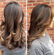 Types Of Hair Colour by Photos Hair Colors For Brunettes Black Hairstyle Pics