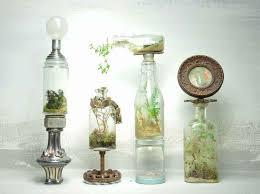 22 best terrariums images on pinterest terrarium ideas mini