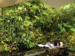 Vertical Gardening by The House Of A Master Vertical Garden Designer