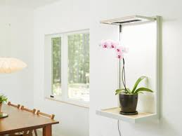 what is the best lighting for plant grow lights how to choose the best indoor lighting