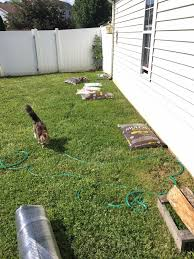 little bit funky how to make a backyard putting green diy