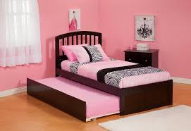 double trundle bed bedroom furniture bedroom elegant image of in remodeling gallery double bed for kids