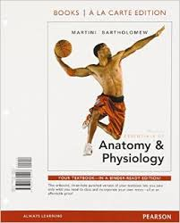 Human Anatomy And Physiology Marieb 5th Edition Martini And Bartholomew 10 Best Download Anatomy And Physiology