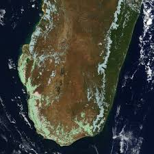 deforestation madagascar image