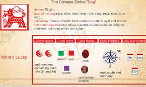 chinese zodiac dog u2013 chaochaocharlie