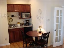 efficiency kitchen ideas efficiency kitchen unit with ideas photo 17538 iezdz