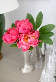 22 best flowers for the home images on pinterest factors