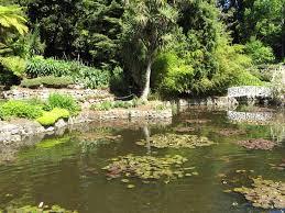 Botanic Gardens Hobart Royal Tasmanian Botanical Gardens Hobart Tasmania