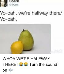 Woah We Re Halfway There Meme - 25 best memes about whoa were halfway there whoa were