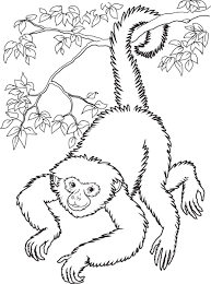baby monkey coloring pages smiling hanging monkey coloring page