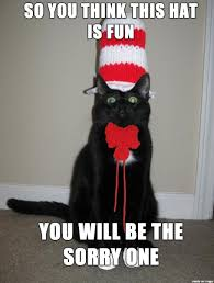 Cat Halloween Costumes Cats 10 Funny Halloween Cat Costume Memes Http Mycatcentral 10