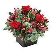 christmas flowers christmas flowers free delivery serenataflowers