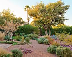 backyard desert landscaping home design ideas pictures remodel