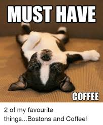Must Have Memes - must have coffee 2 of my favourite thingsbostons and coffee