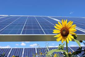 Pikes Peak Urban Gardens - sunshare profile u0026 reviews 2017 energysage