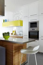 kitchen cabinet design for apartment voluptuo us
